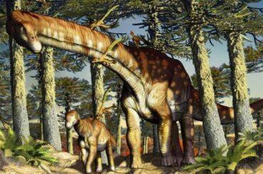 Ninjatitan zapatai titanosauro più antico mondo scoperto patagonia argentina