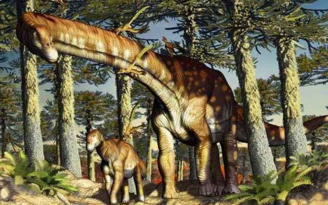 ninjatitan zapatai titanosaauro piu antico mondo scoperto patagonia argentina