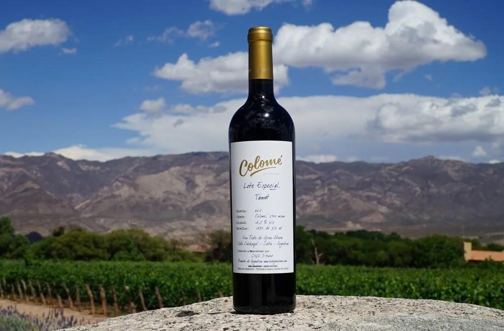 Tannat Lote Especial 2018 colomé Decanter World Wine Awards 2020