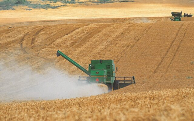 agricoltura argentina export prezzi commodity dollari