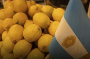 divieto ue agrumi argentina citrus black spot