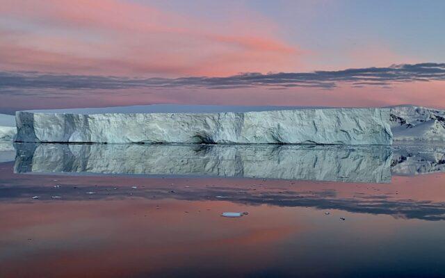 antartide area marina protetta argentina krill