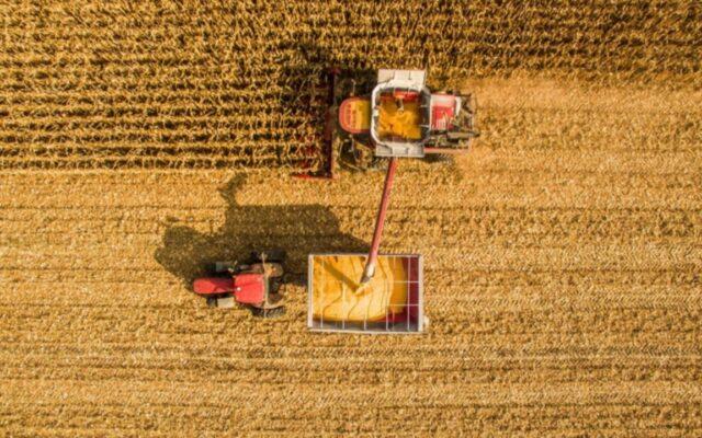 agricoltura argentina campagna cereali 2020 2021