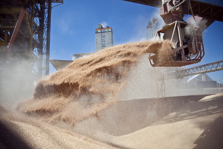 argentina crisi economia crescita agricoltura allevamento