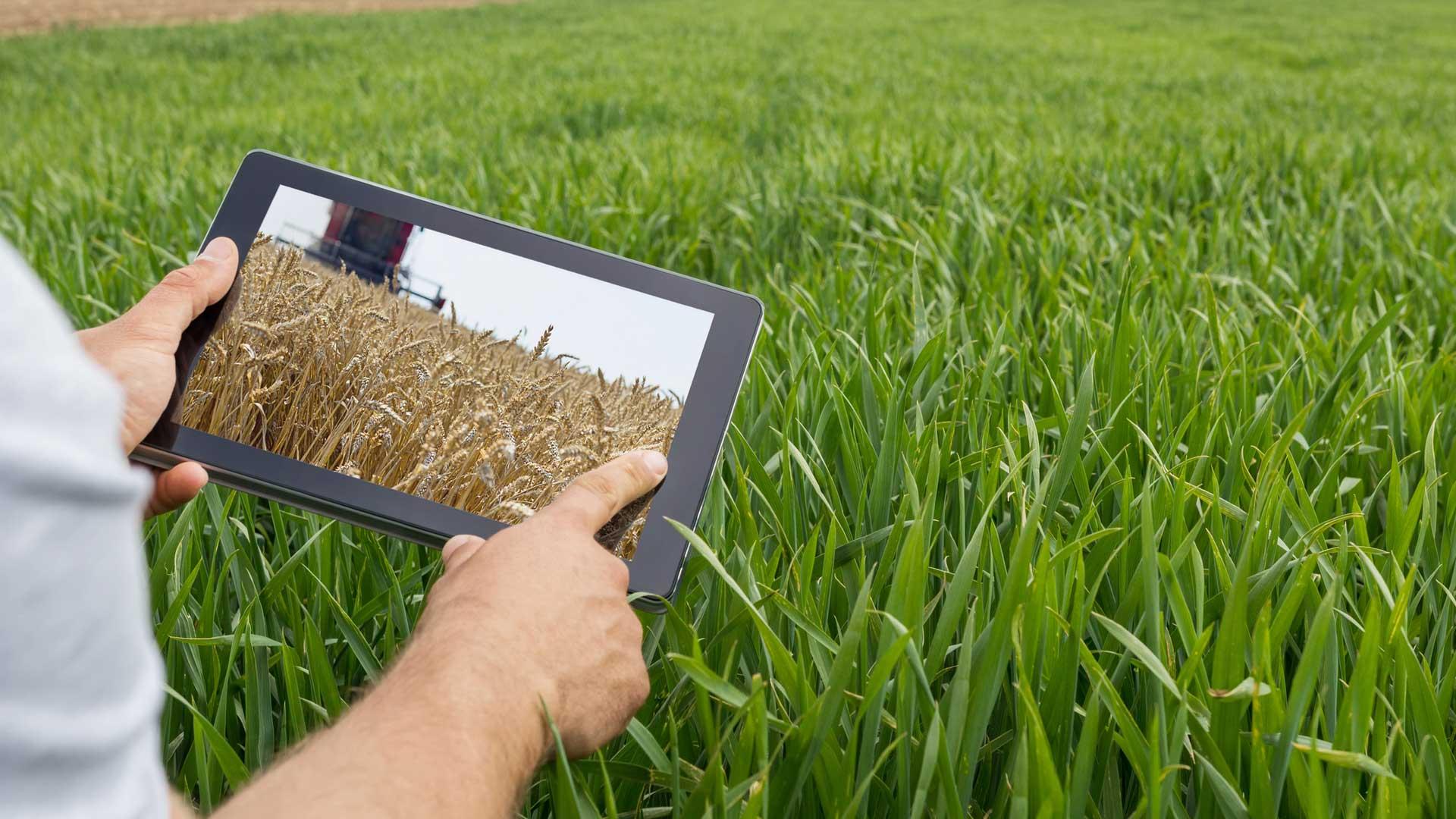 argentina tecnologia digitalizzazione agricoltura