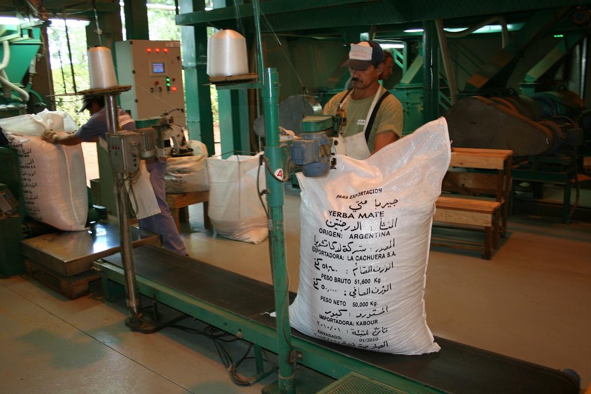 yerba mate argentina produzione consumo export 2019
