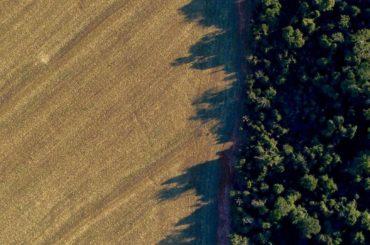 biodiesel argentina export aumento dazi usa