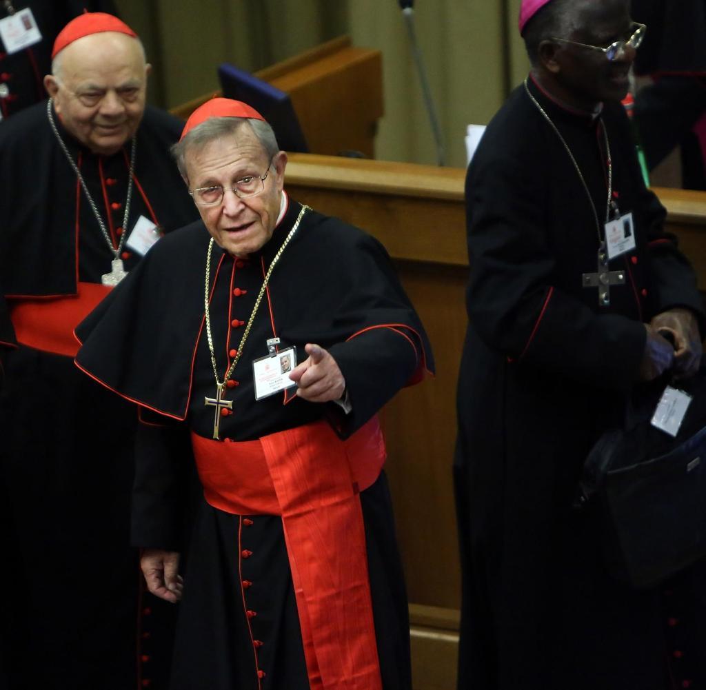 papa francesco dimissioni cardinale kasper nemici