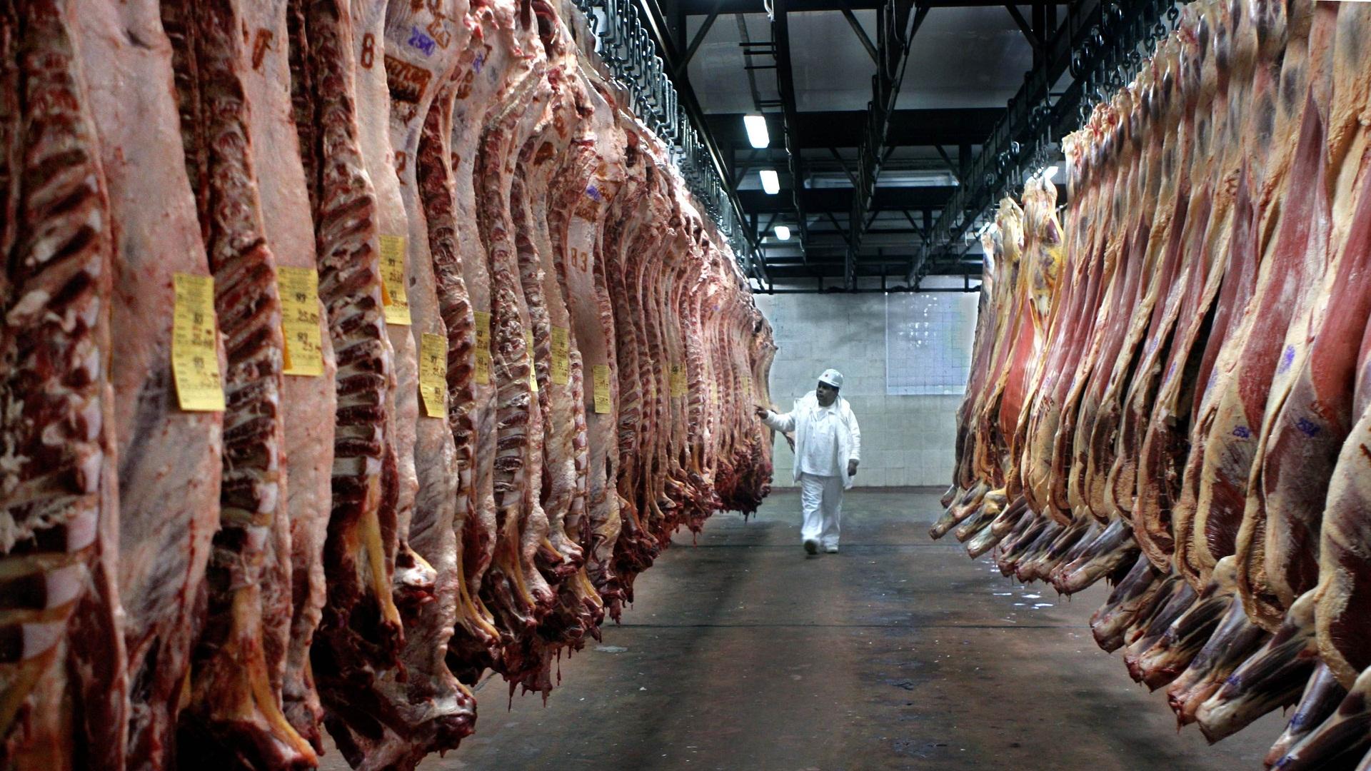 carne argentina crisi consumi export
