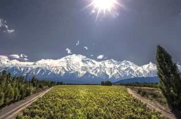 catena zapata vino argentina The World's Most Admired Wine Brands 2021