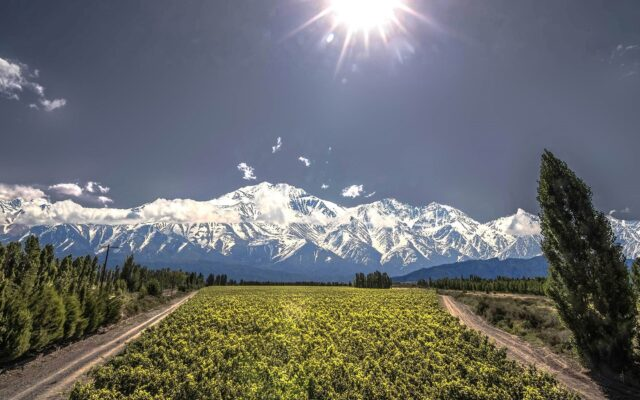 catena zapata vino argentina the worlds most admired wine brands 2021