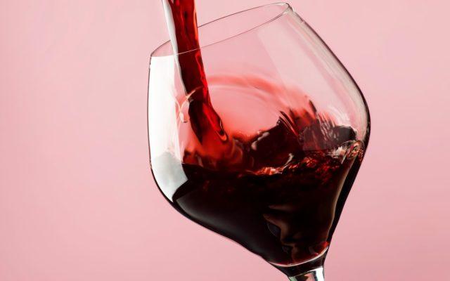 vino argentino dial mundial del malbec argentino 17 aprile