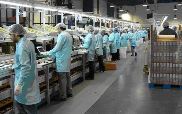 aumento disoccupazione in argentina covid 2020