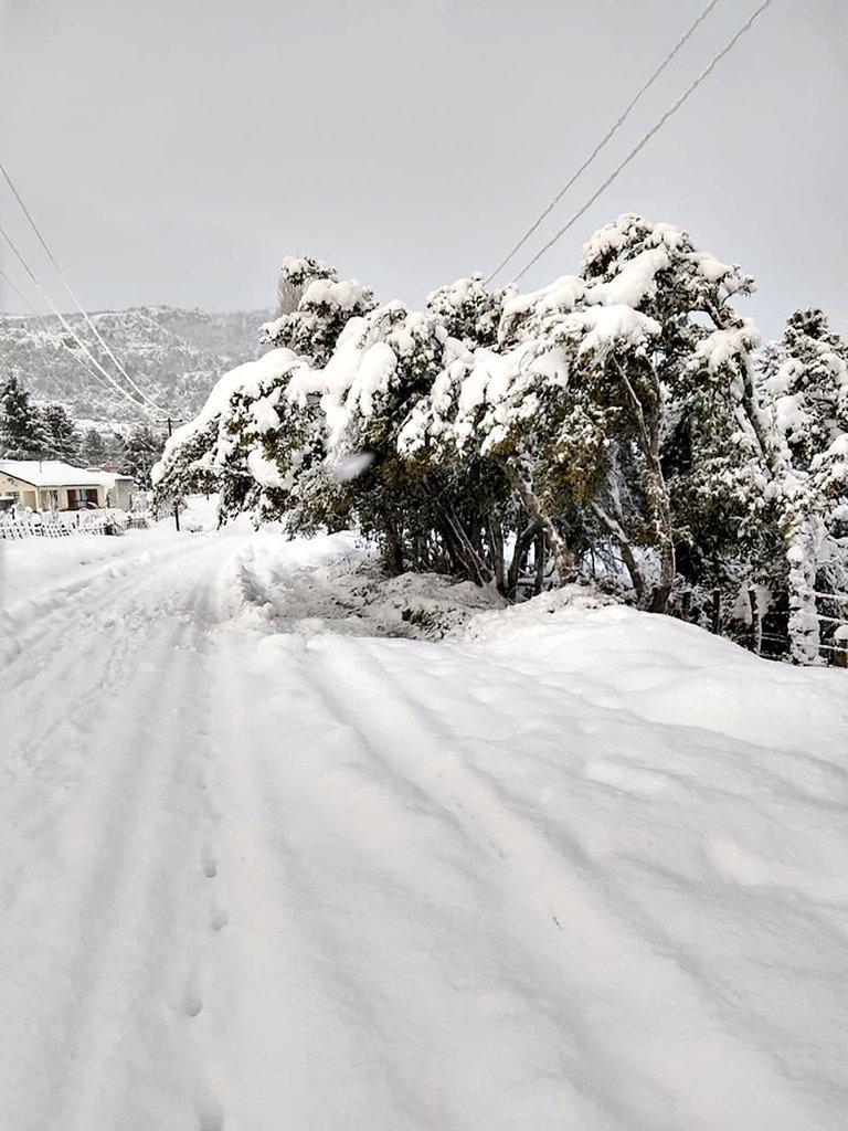 patagonia argentina inverno 2020 neve freddo record temperature
