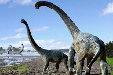 patagonia argentina neuquén ritrovamento dinosauri titanosauro