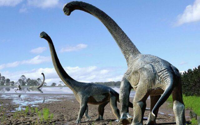 patagonia argentina neuquen ritrovamento dinosauri titanosauro
