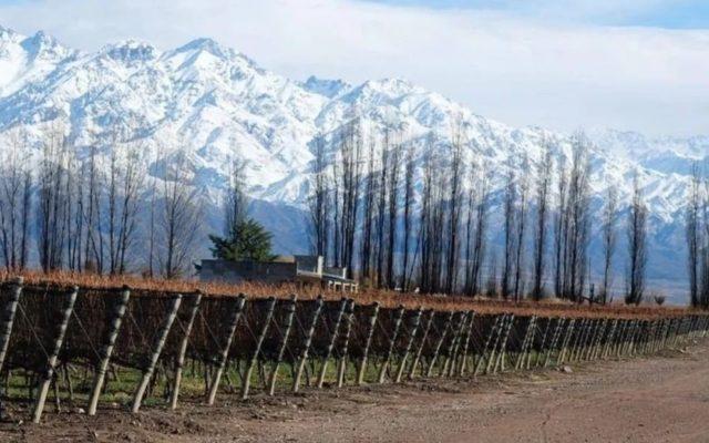 vino argentino zuccardi valle de uco argentina migliore cantina mondo