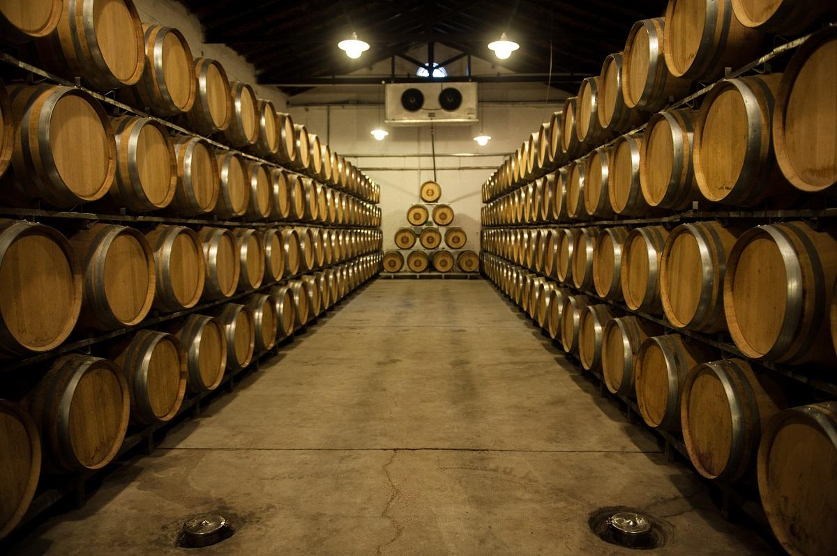 vino argentino aumento export 2020 paesi destinazione
