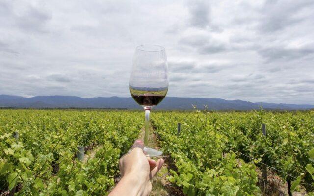 vino argentino miglori international wine challenge 2021
