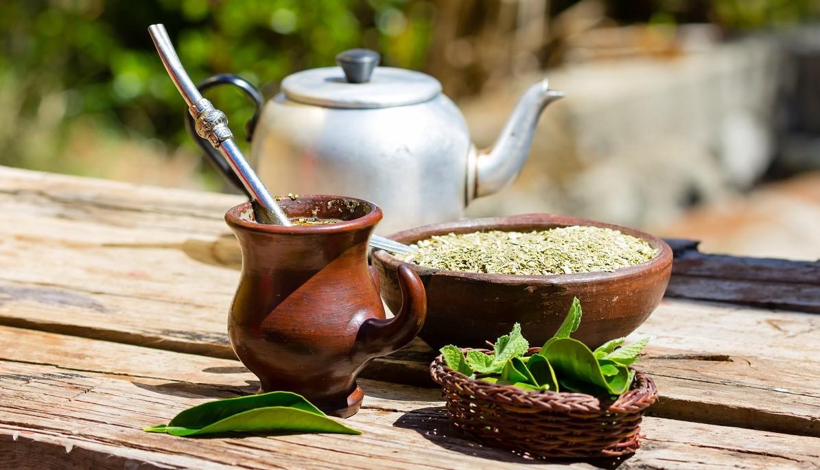 yerba mate mercato export